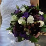 Dark red dahlia, purple lisianthus and Blackberries