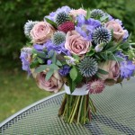 Pink rose, blue scabious and Echinops
