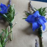 Rosemary Buttonhole