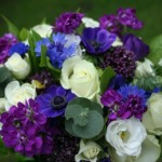 Cornflowers, Stocks and white roses