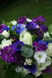 Cornflowers, Stocks and white roses