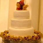 Cymbidium Orchid Cake-top