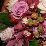 Pink rose, Cymbidium Orchid and blackberries