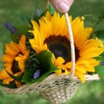 Sun flower and Lavender flower girl basket